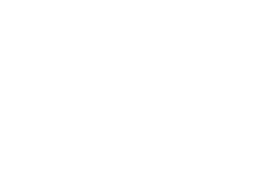 Triangle Fans logo
